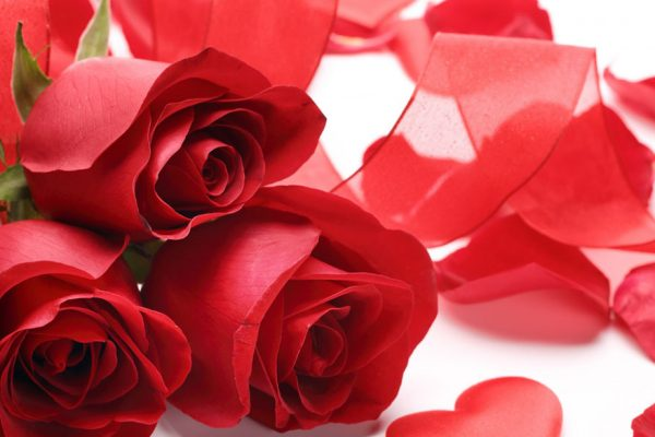 Frases célebres para dedicar este 14 de febrero