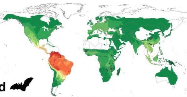 Un tercio de jóvenes en América Latina desestima riesgo de contagio de #Covid19
