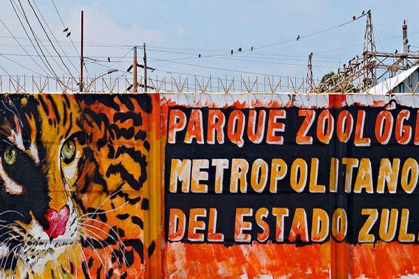El hambre y la delincuencia acorralan a zoológico del Zulia