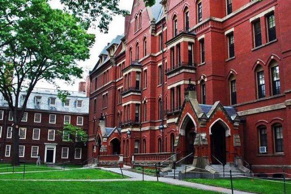 Universidad de Harvard y el MIT se enfrentan a Trump por revocar visas a estudiantes extranjeros