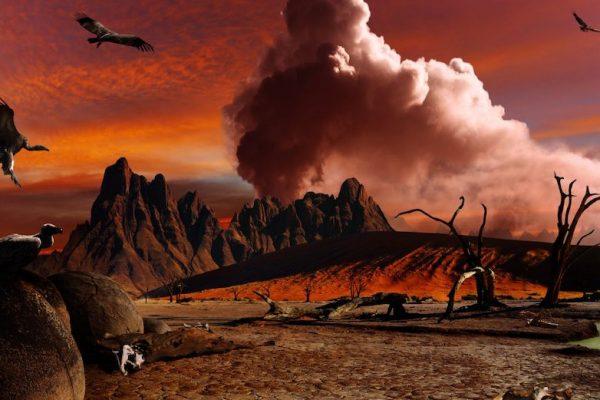 Las matemáticas auguran la próxima extinción masiva en menos de 100 años