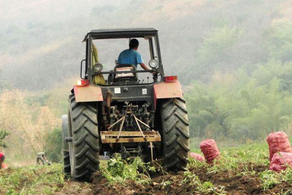 Gobierno firma acuerdo con Onudi para desarrollo agrícola