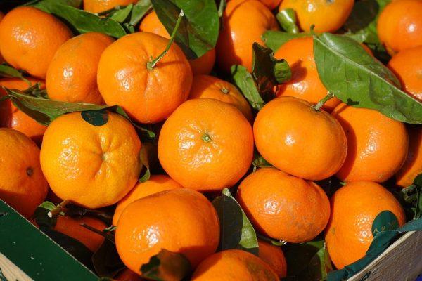 Seis beneficios de la mandarina para tu salud