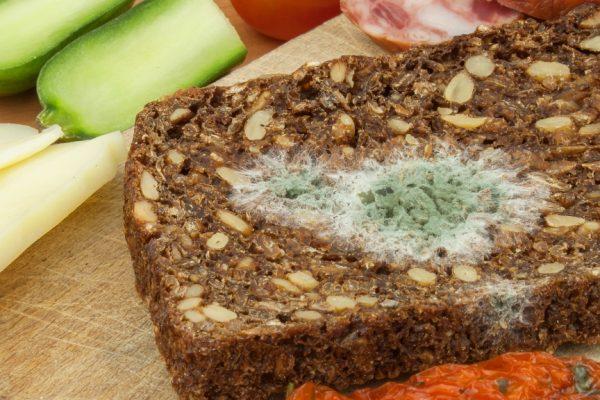 ¿Qué tan malo para la salud es comer alimentos con moho?