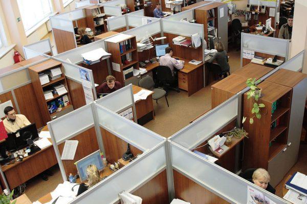 6 signos de que tienes un buen trabajo