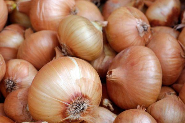Comprar un kilo de cebolla consume la mitad del sueldo mínimo