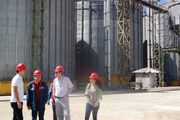 Silmaca espera duplicar su producción de harina de maíz