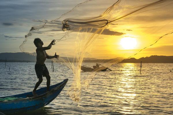 Acuicultura ecológica, alternativa ante creciente demanda de pescado