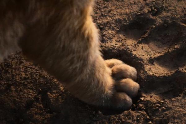 """Disney presentó en internet su nueva versión de """"El Rey León"""""""
