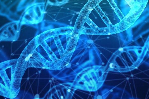 Para Navidad, un test de ADN, la última moda en EEUU