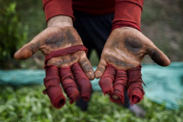 La ONU carece de fondos para seguir salvando vidas en Venezuela