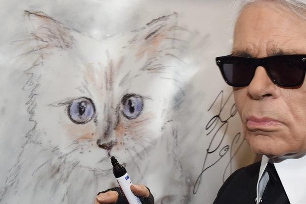 Choupette, la gata que podría recibir la herencia de Karl Lagerfeld