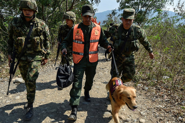 Venezuela ha incautado más de 18.900 kilos de droga en lo que va de 2021