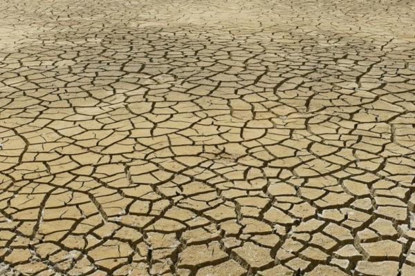 Global Footprint Network: La humanidad ya agotó los recursos del planeta para este año