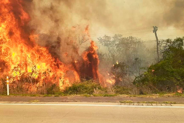 Bolivia usa avión super tanquero de Boeing para sofocar incendios en su área amazónica