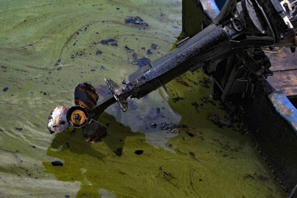 El Lago de Maracaibo sufre un