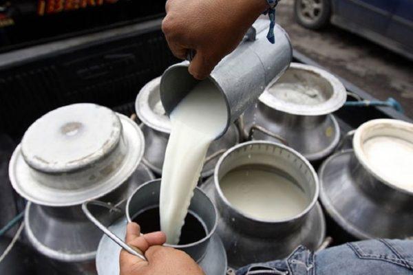 Falta de diesel afecta producción en industria láctea