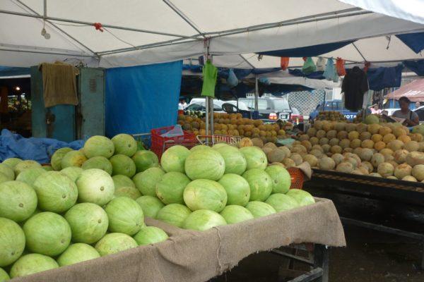Producción local e importaciones solo cubren 30% del consumo nacional de alimentos