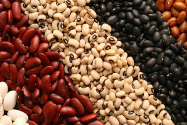 Venezuela prevé garantizar producción de leguminosas con apoyo de China