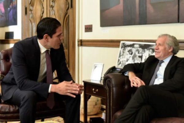 Plantean a la OEA sancionar a diputados opositores acusados de corrupción