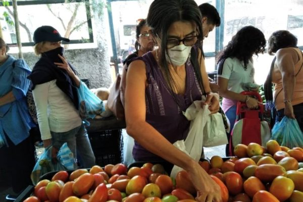 Una familia necesitó más de Bs.114 millones o US$253,39 para comer en septiembre