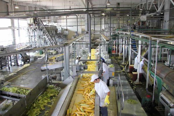 Conindustria: 57% del sector manufacturero opera con menos del 20% de su capacidad instalada