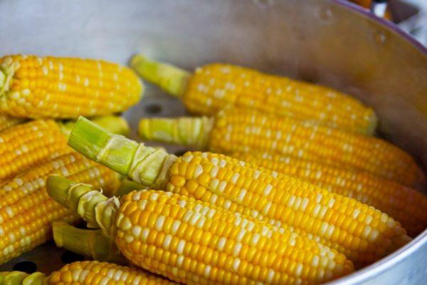 Oferta nacional de cereales y leguminosas caerá 20% al cierre del año