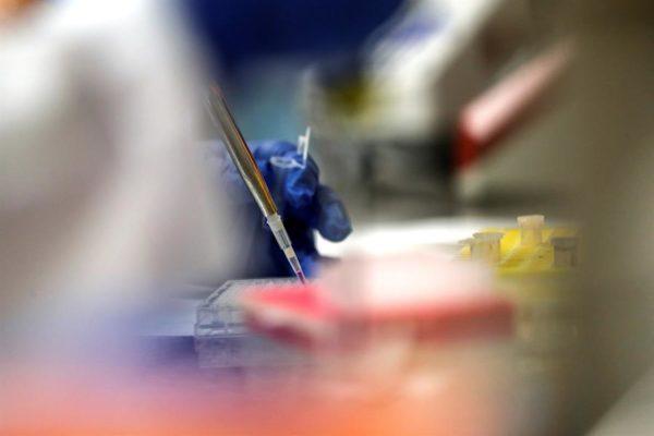 Pfizer consigue la vía rápida en EEUU para dos vacunas contra el #Covid19