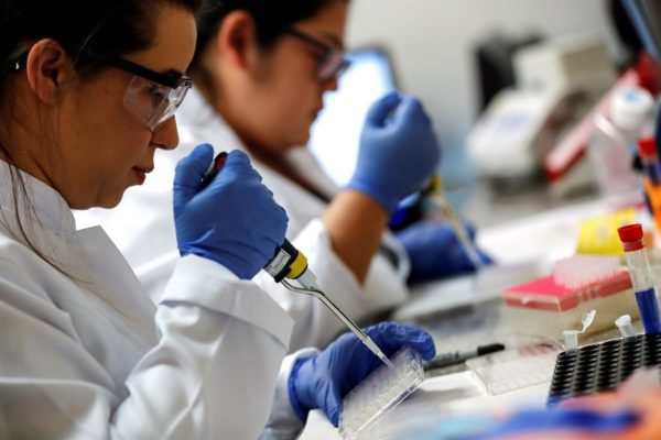 OMS: seis candidatas a vacunas están en fase muy avanzada y hay esperanzas