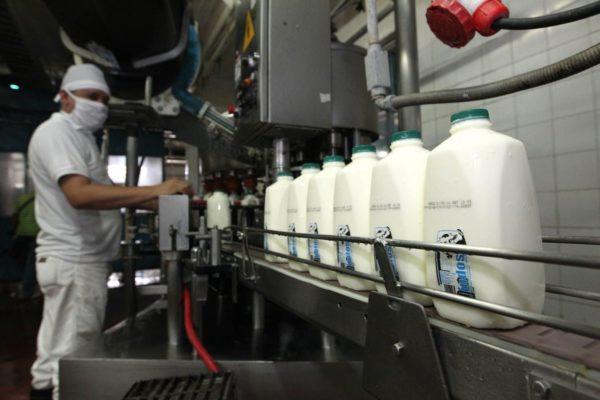 Cavilac: aumento del dólar y déficit de gasolina impactan industria láctea