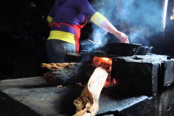 Regreso al siglo XIX: ambientalistas se preocupan por tala indiscriminada para cocinar con leña