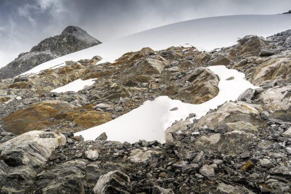 Nuevas formas de vida emergen entre las rocas desnudas del último glaciar de Venezuela