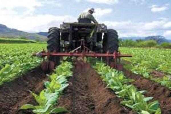 'Dejar el ataque': Vielma Mora dice que es el momento de ayudar a los productores