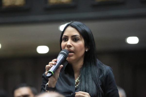 Solórzano: Reforma del Código Penal busca reforzar la persecución a quienes rechazan al Gobierno
