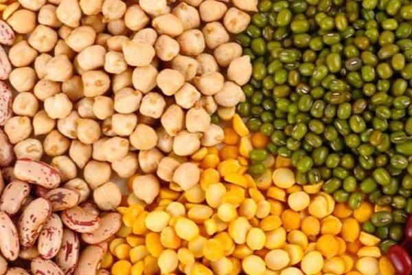 Venezuela exportó más de mil toneladas de leguminosas hacia Vietnam, Turquía, Singapur, Hong Kong y EEUU