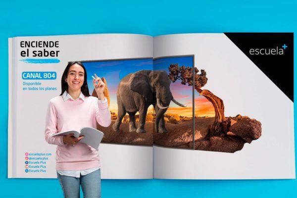 SimpleTV lanza proyecto educativo a distancia «Escuela Plus»