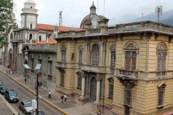 Exclusivo   Las plagas que azotan a Mérida generan pobreza, parálisis y desolación