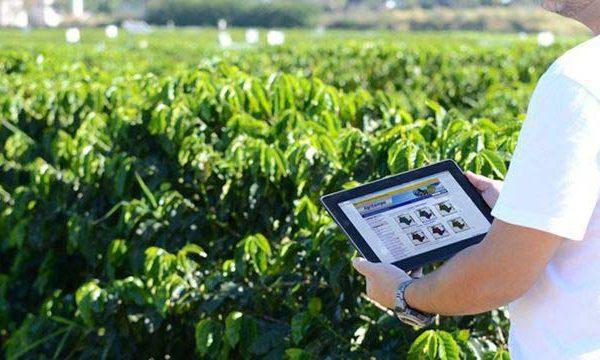 Expertos dicen que la agricultura digital es clave para sistemas alimentarios