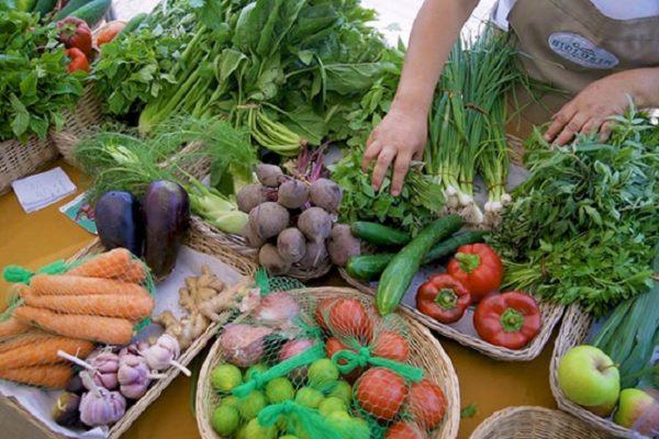 Fedeagro: Los precios de los productos agrícolas aumentan hasta 78% debido a la crisis de combustible